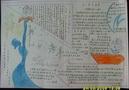 知识的海洋读书手抄报