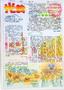 诚信A4手抄报版面设计图