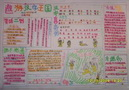 规范汉字书写手抄报图片